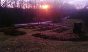 Spy Garden Sunset