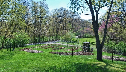 Spy Garden April 25, 2013