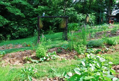 Spy Garden June 30, 2013
