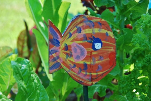 Angelfish (by Alison)