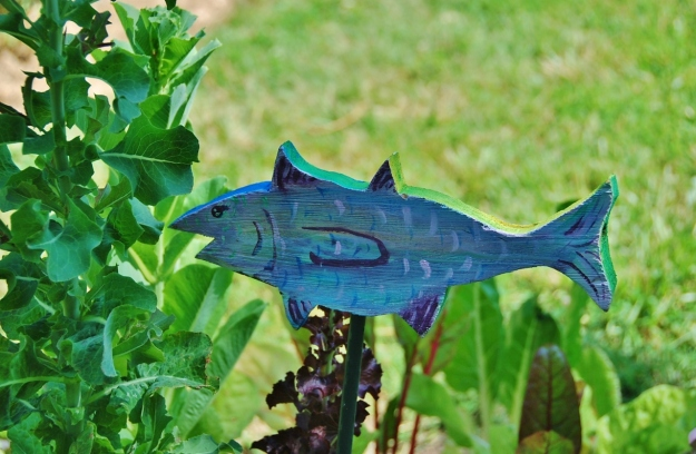Spanish Mackerel (by Alison)