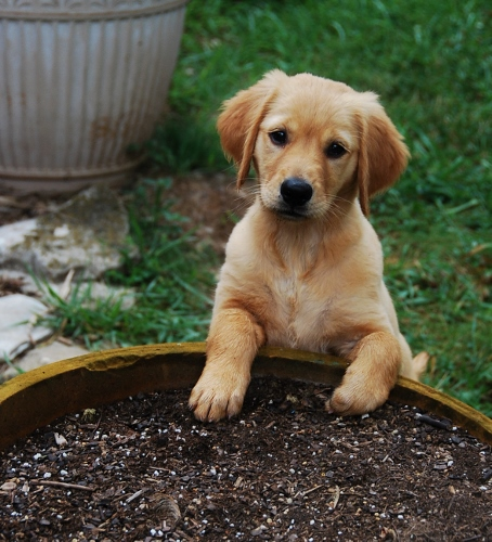Already into gardening!