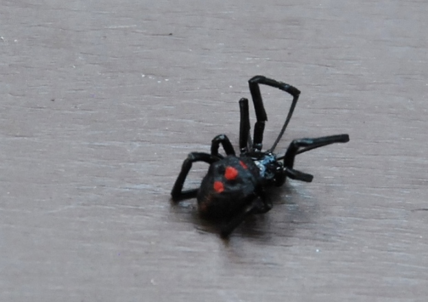 A Black Widow?