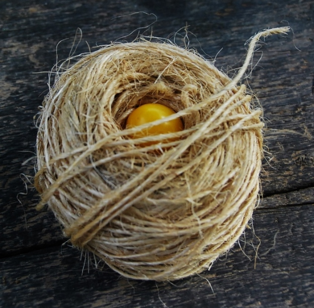 Egg Yolk? In twine nest. (Yellow cherry tomato!)
