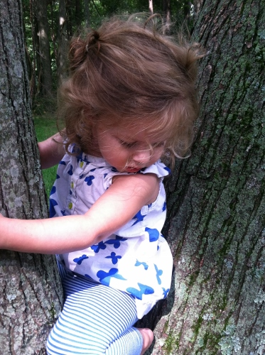Tree climbing: one of many activities more fun than writing about Miley