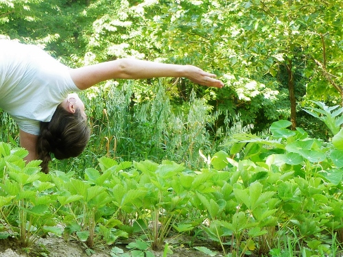Namaste! (me doing yoga in the garden last summer)