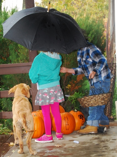 A rainy day scavenger hunt