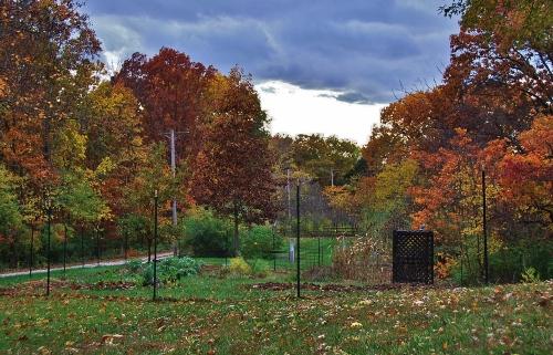 Spy Garden November 2013