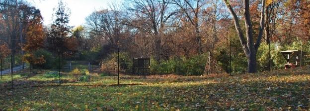 Spy Garden November 12, 2013