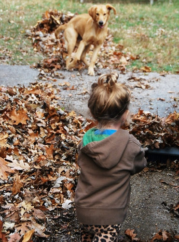 Baby helped sweep the driveway.