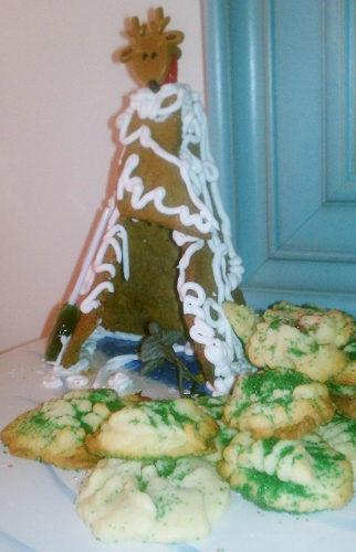 Gingerbread Garden Teepee Model
