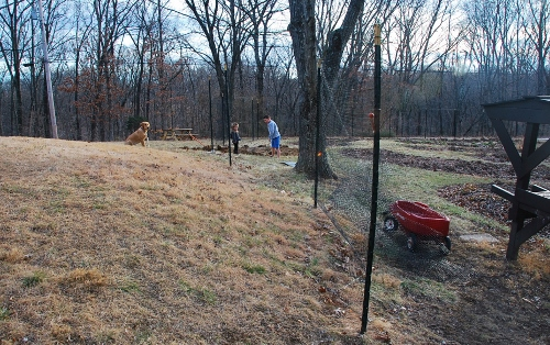 The fence will be moved about ten feet out to include this little hill.