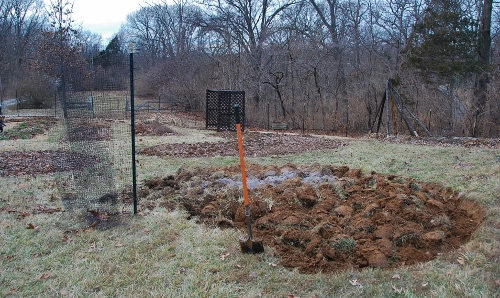 View of the new plot facing west/northwest: where the sun will be setting when the garden is green!