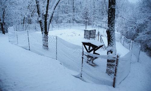 Best Spy Garden Snow Shot