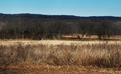 Shaw Nature Preserve...best of our winter outings.