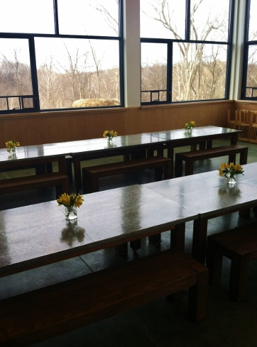 Baby's school's dining hall (with sweeping views of the FOREST, of course!)