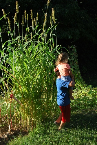 The kids next to very tall yellow bonnet sorghum