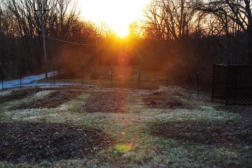 Spy Garden First Day of Spring Sunset