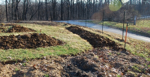"""The """"back nine"""" of the garden About halfway done turning everything over."""