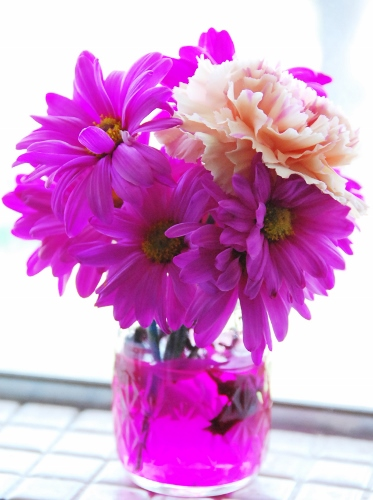 Technicolor flowers! (store-bought)