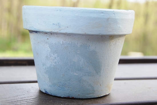 I painted this pot last year: reminiscent of the painting, don't you think?!