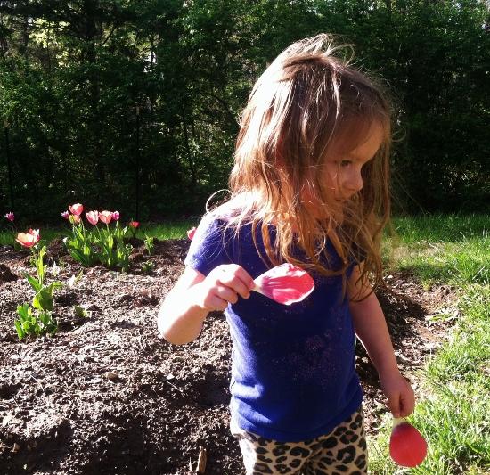 Babyzilla! And it's ok, tulip petals are pretty fun to pick and examine!