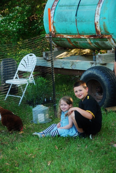 """Said """"hello"""" to some chickens..."""