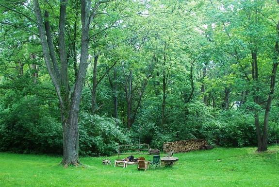 Spy Garden Backyard