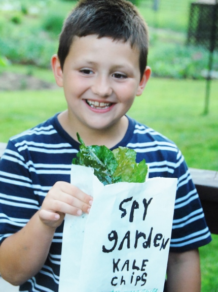Spy Garden Kale Chips