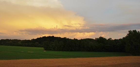 Pretty Sunset Walk