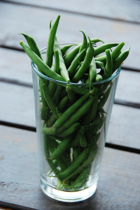 Cantare Green Beans: very tender and delicious!