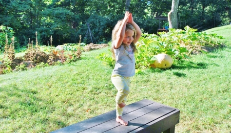 Tree pose on coffee table in the garden living room