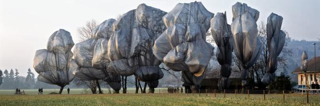 Wrapped Trees. Christo and Jeanne Claude. 1997-98. Photo: Wolfgang Volz