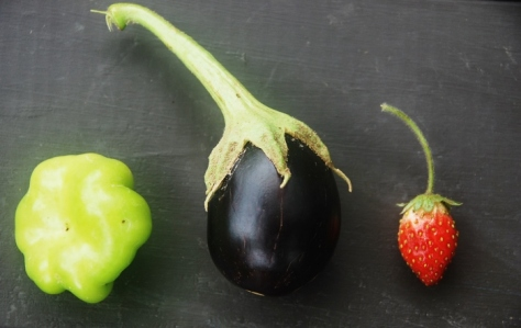 Pepper, eggplant and strawberry