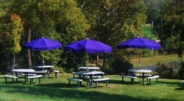 Beyond the porch. Love the rich purple umbrellas!