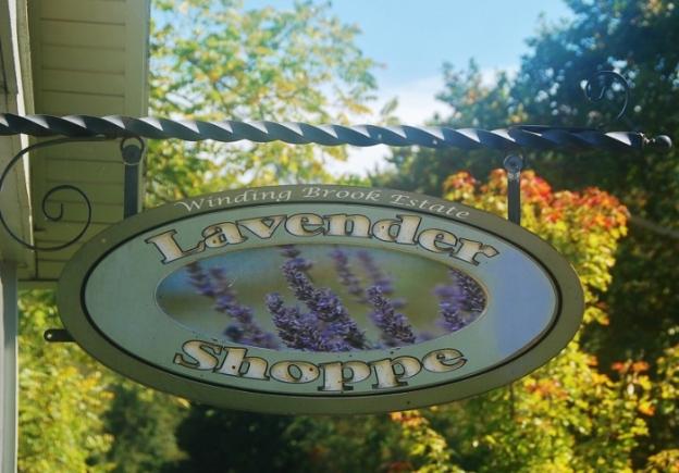 Lavender Shoppe...