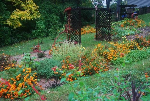 Spy Garden October 14, 2014
