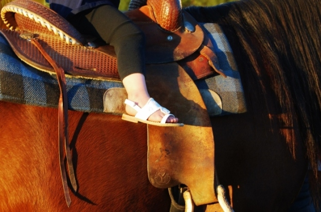 Riding Shoes?