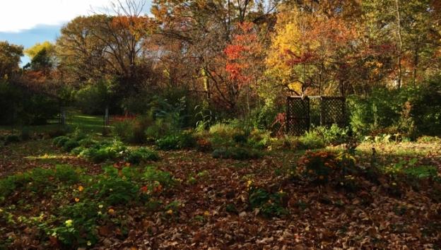 Spy Garden 10.28.14