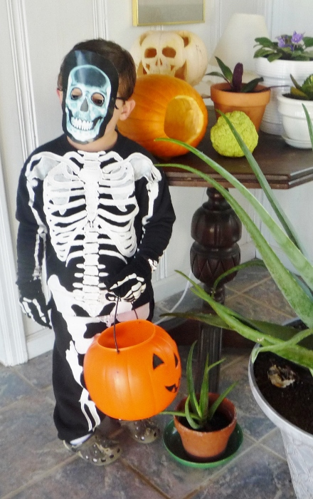 This anatomically correct skeleton costume!
