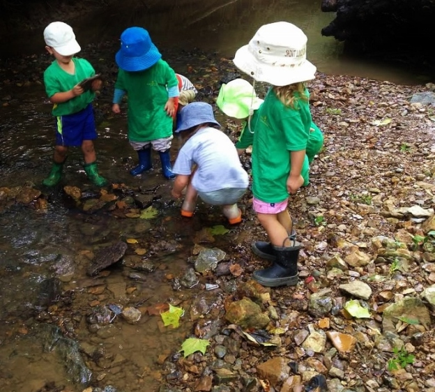 Forest School Creek