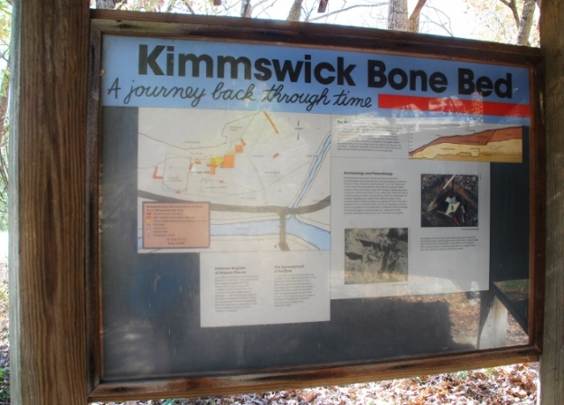 The Kimmswick Bone Bed