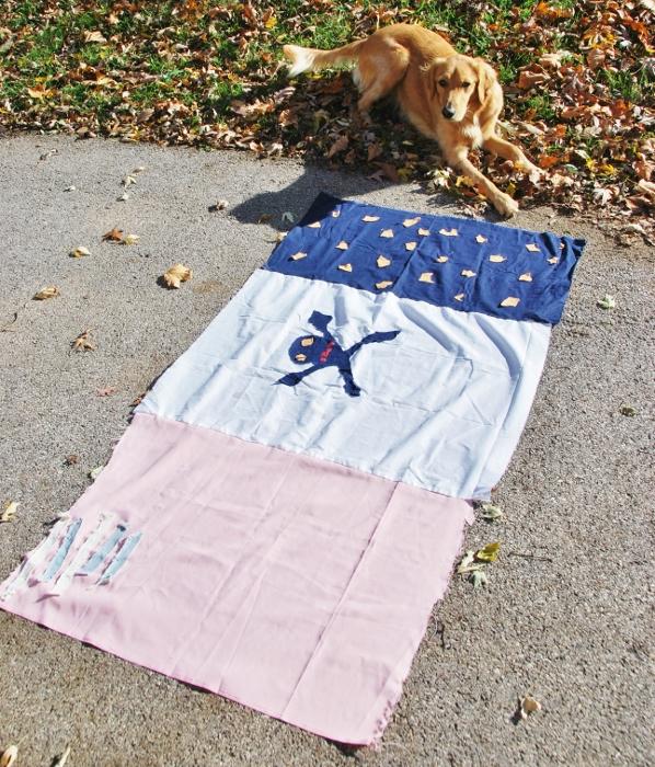 Flag with Dexie