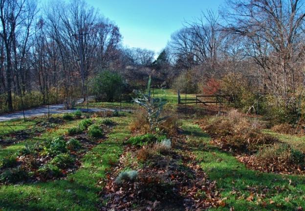 Spy Garden 11.25.14