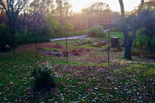 Spy Garden November 2014