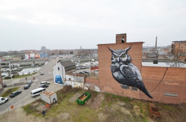 ROA. Belgium (source)