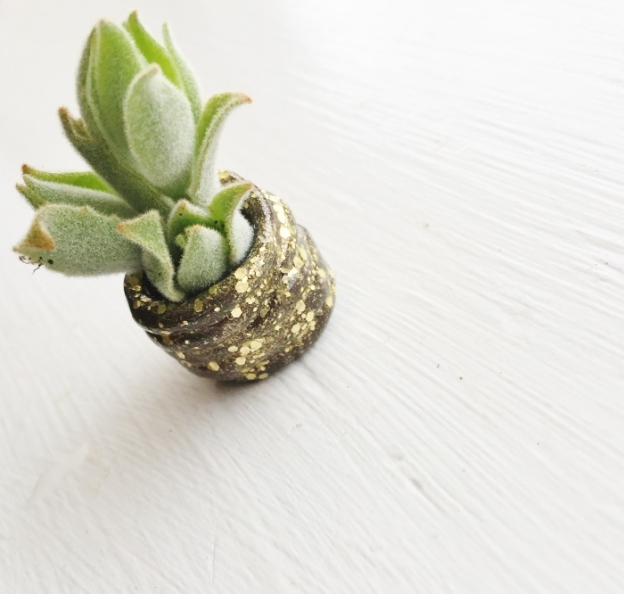 Teeeny tiny planter (made from clay)