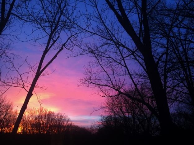 Sunset over Spy Garden 1.5.15