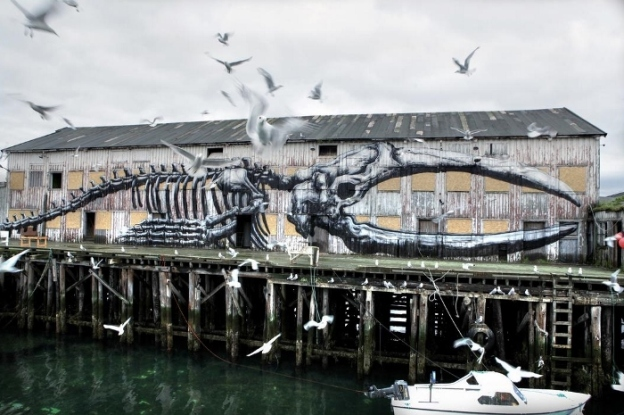 ROA. Vardø-Norway Photo © by Ian Cox 2012 (source)