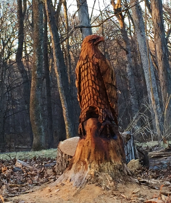 Bald Eagle Sculpture made from an old tree (with a chainsaw!) near Spy Garden